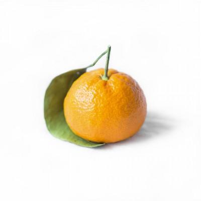 Aroma de Mandarina